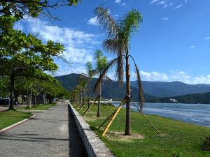 Prefeitura conclui plantio de jerivás na orla do Itaguá
