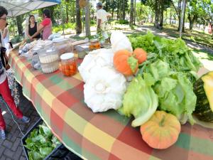 Prefeitura realiza IX Semana da Agricultura Orgânica