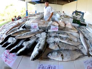 Prefeitura convoca interessados em comercializar no Mercado de Peixes