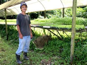 Agricultores familiares são orgulho de Ubatuba