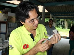 Prefeitura lança Portal para Adoção de Animais em Ubatuba