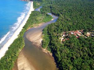 Prefeitura e sociedade se posicionam contra privatização do Parque Estadual da Serra do Mar