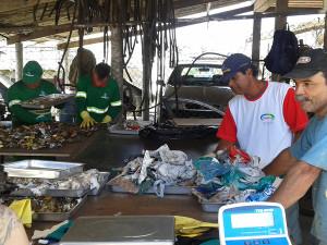 Começa a implementação do Plano de Gestão de Resíduos Sólidos