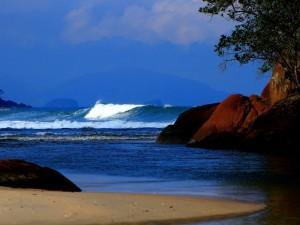 Confirmada etapa do Brasileiro de Surf Profissional Feminino em Ubatuba