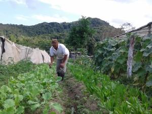 Prefeitura de Ubatuba é primeira colocada em concurso de combate à fome e à desnutrição