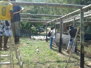 Atividade no Quilombo da Caçandoca marca Semana da Agricultura Orgânica