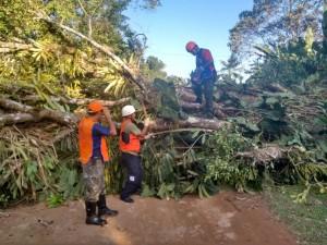 Defesa Civil realiza operação durante fortes ventos em Ubatuba