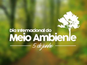 Associação dos Moradores da Picinguaba organiza evento de conscientização ambiental
