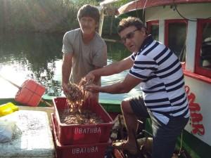 Período de defeso do camarão termina em 1° de junho