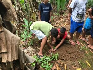 Ações de plantio de mudas e educação ambiental continuam em Ubatuba
