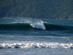 1º festival Sesh de Surf reúne amantes do esporte em Ubatuba