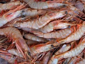 Mercado de Peixe volta a ofertar camarão após fim do período de defeso