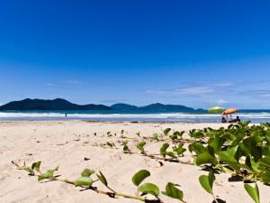 Praias de Ubatuba estão entre as preferidas dos paulistanos
