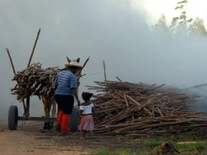 Combate ao trabalho infantil é tema de campanha em Ubatuba