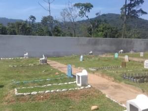 Prefeitura de Ubatuba promove manutenção nos cemitérios