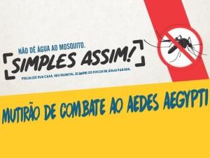 Prefeitura organiza mutirão de combate à dengue no Perequê-Mirim