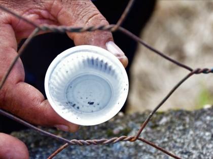 Ubatuba entra em situação de epidemia da dengue