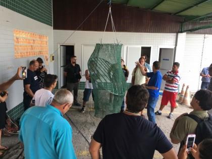 Testes com dispositivo de escape de tartarugas acontecem em Ubatuba