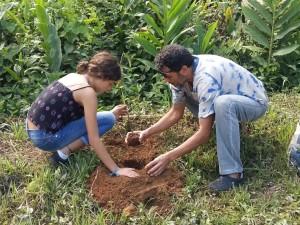 EM José Belarmino promove plantio de mudas de árvores nativas