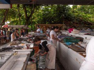 Prefeitura inicia cadastro e recadastro para comercialização no Mercado de Peixes